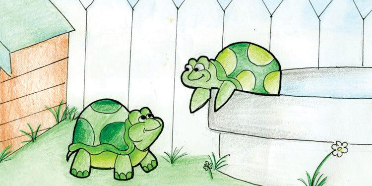 A turtle tale-una storia di tartarughe