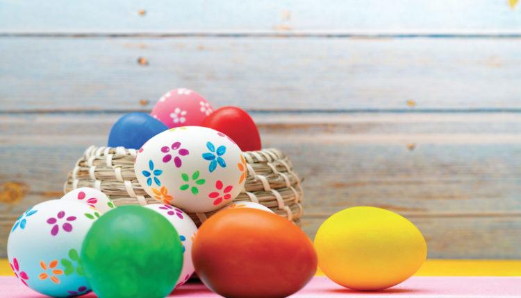 Come nasce l'uovo?