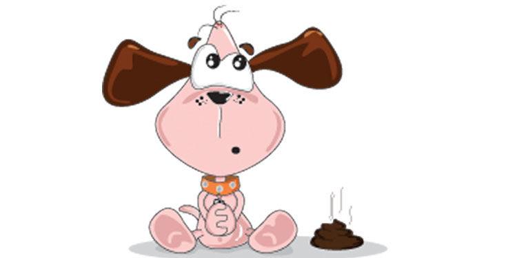 Educare il cane a fare pupù