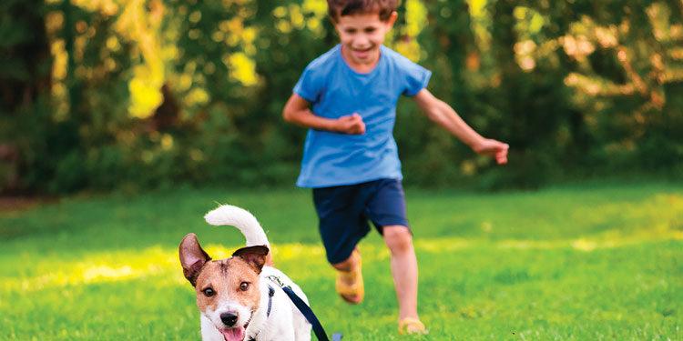 Bambini e cani: le attività da fare insieme