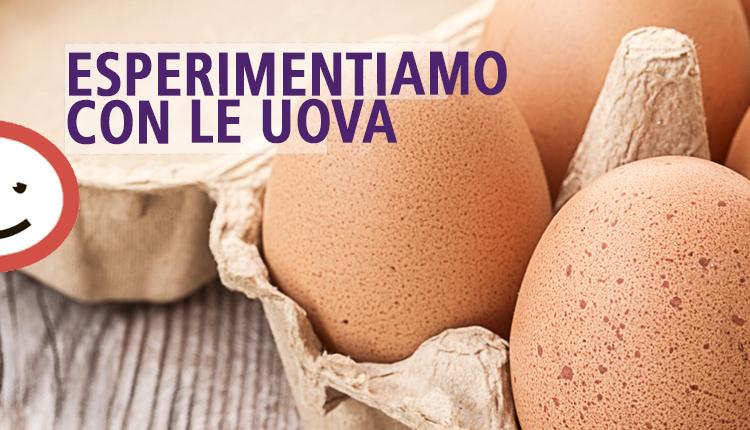 Esperimentiamo con le uova