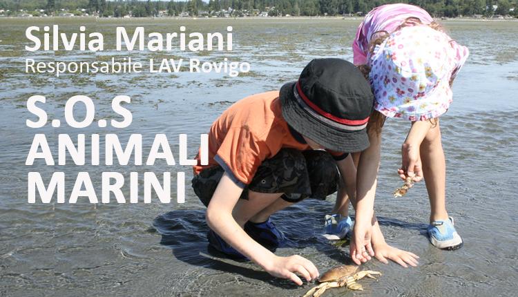 SOS Animali Marini